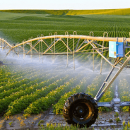 Ứng dụng Khoa học dữ liệu và Trí tuệ nhân tạo trong nông nghiệp